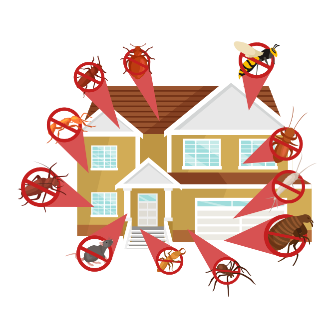 professional bug control company anaheim hills orange county