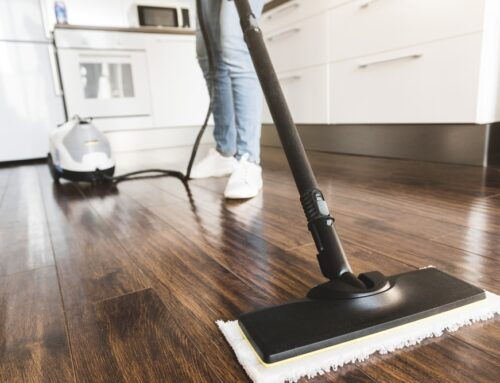 Spring Cleaning Tips for a Pest-Free Home