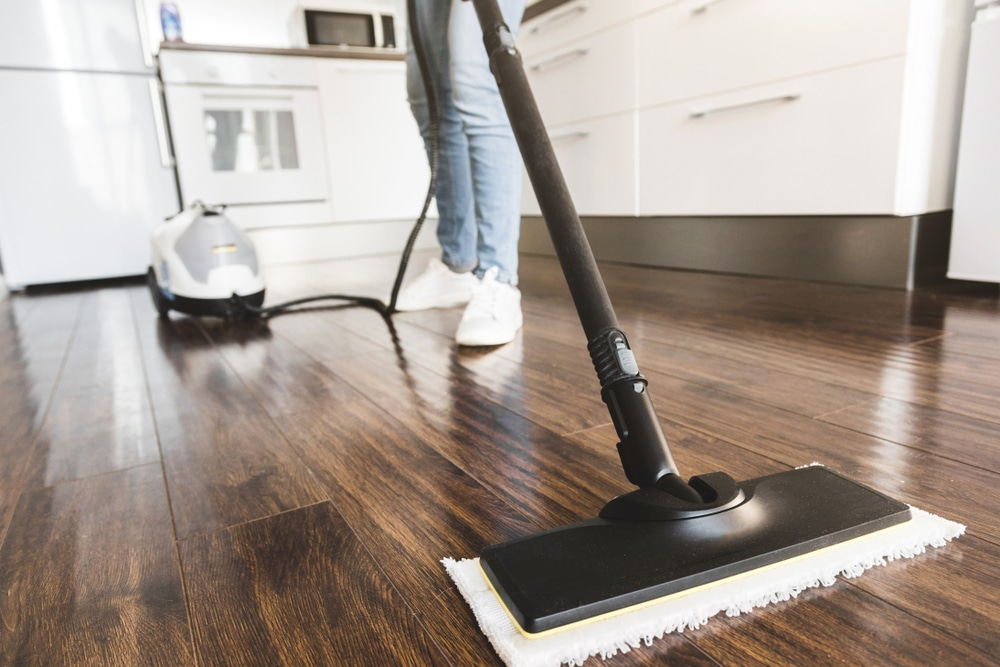 spring-cleaning-tips-for-germ-free-home-pest-control-anaheim-hills-orange-county